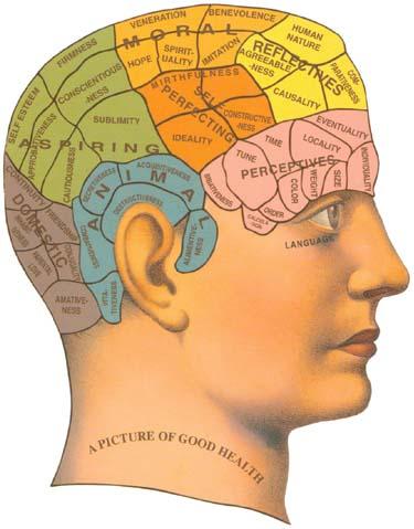phrenology.jpg